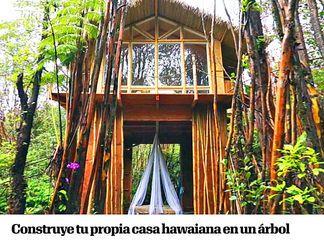 M s de 25 ideas incre bles sobre casas hawaianas en - Construye tu propia casa ...