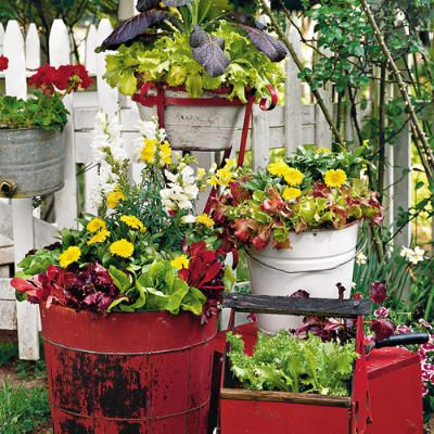 Using vintage wooden boxes & buckets as container gardens