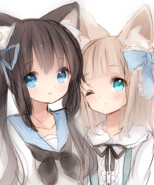 Anime cat girl sisters so cute i pined this on my anime - Anime kitty girl ...