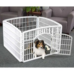 Dog Playpens - Great for small dogs and young puppies. Easy to pack and go. Great for indoors or outdoors. Available at Walmart, Amazon, etc.