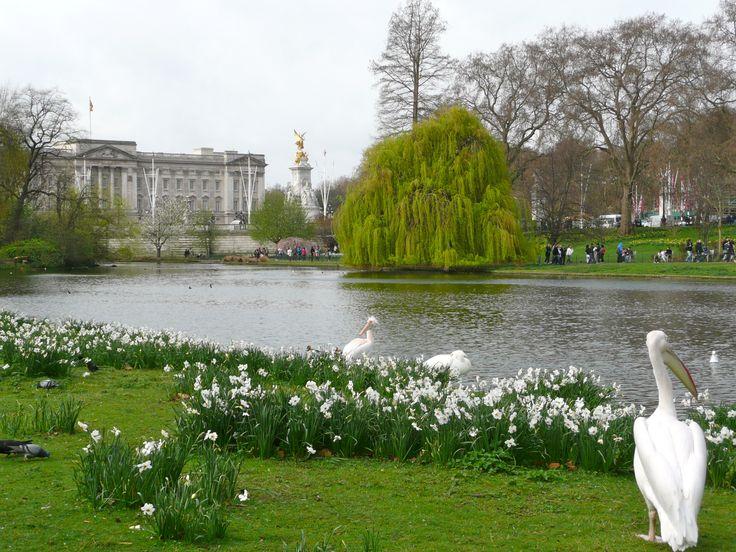 London Walking Tour Buckingham Palace