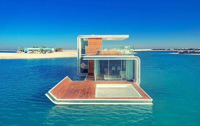 The floating seahorse for sale