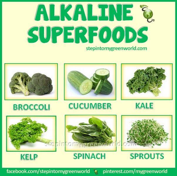 Yummy Healthy Plant Foods