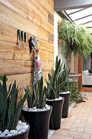 O corredor do jardim de inverno, projetado pela designer de interiores Cristiane Oliveira, recebeu o painel de pínus escurecido, onde foram pendurados o avental e os acessórios. Nos vasos, espadas-de-são-jorge. Ao fundo, samambaias criam uma cobertura natural