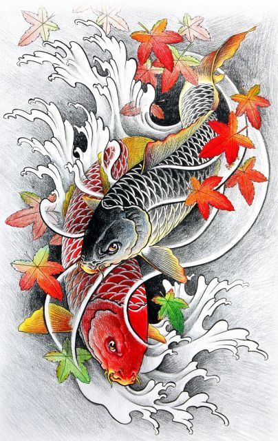 279 best images about poisson ko on pinterest discover for Poisson koy