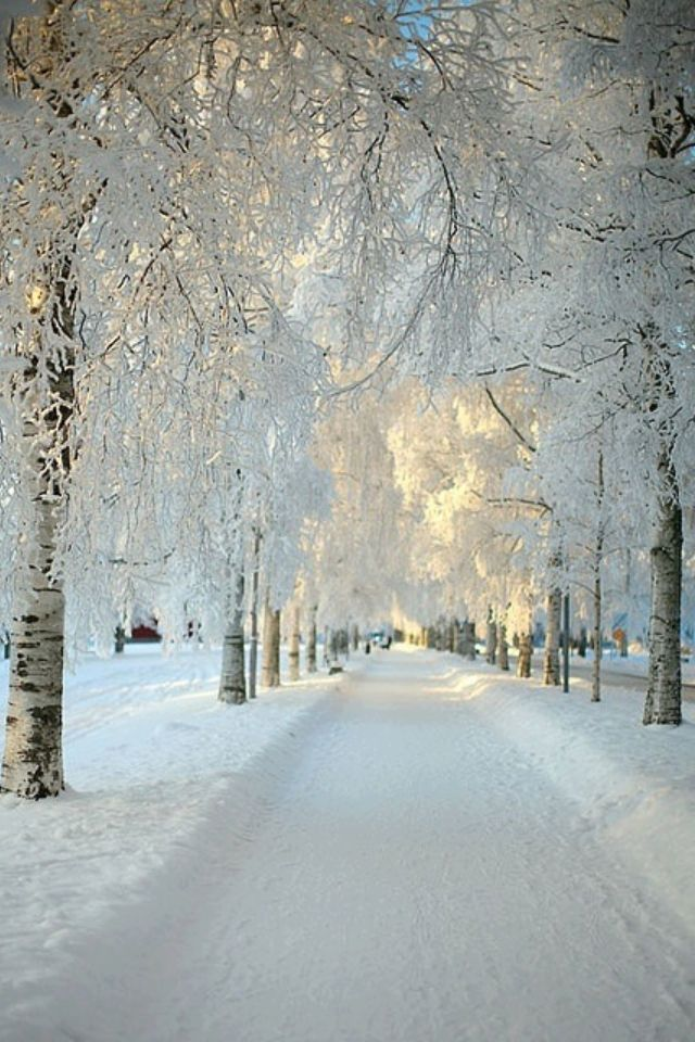 I want to go to the snow this winter break.