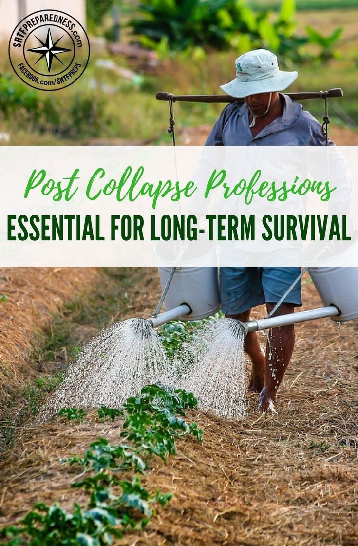 Post Collapse Professions Essential for Long-Term Survival — If help never comes, your only chance of survival would be to join a community and start rebuilding our civilization. However, there are only certain professions people will look for in a post-collapse world.