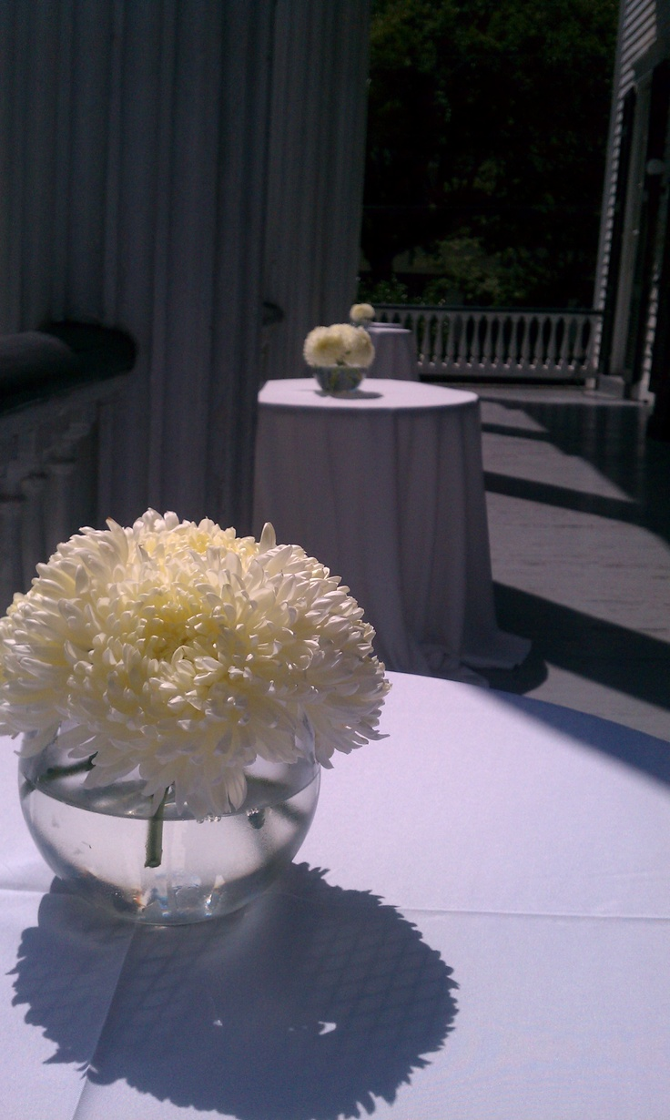 Simple Football Mum Centerpiece $25.00 resembles hydrangea and can be in any style vase (comes in white, yellow and bronze)