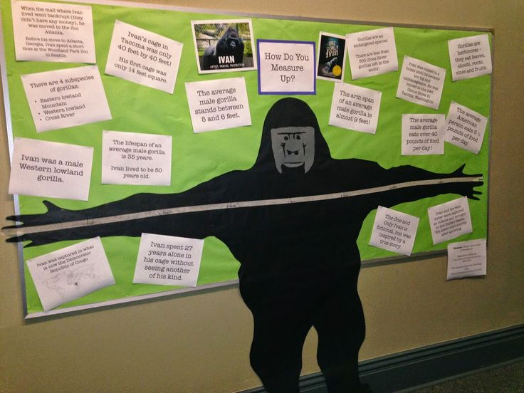 A Librarian Less Ordinary: The One and Only Ivan Bulletin Board