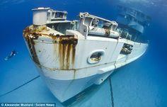 Un nageur s'approche de la proue du navire de l'armée américaine USS Kittiwake, coulé de manière intentionnelle en Janvier 2011 dans le but de former un récif artificiel. Le bateau gît à une vingtaine de mètres de profondeur et une eau cristalline! On peut dire que le contraste est saisissant!