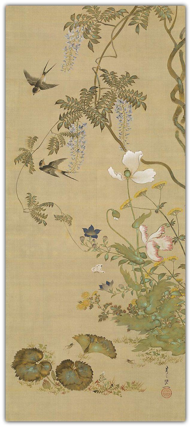 Birds and flowers, circa 1855. Suzuki KIITSU. JapaN 1796 - 1858. | Art Gallery of New South Wales