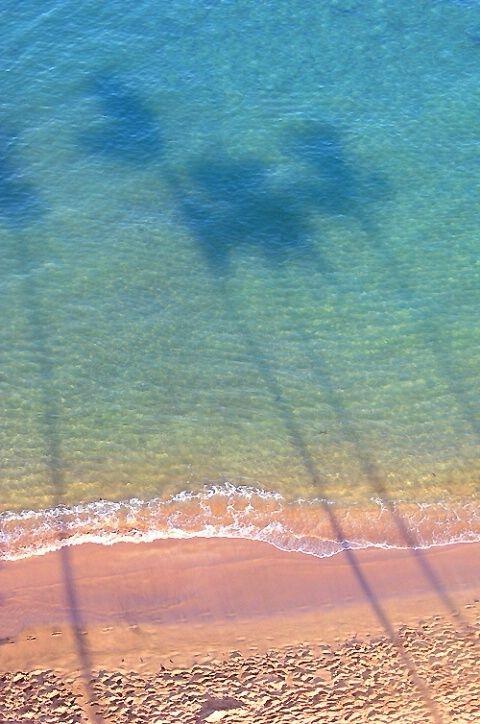 Pink sand + aqua water + palm tree shadows = tropical heaven