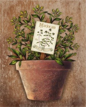 Potted Herbs IV (Kate Ward Thacker)