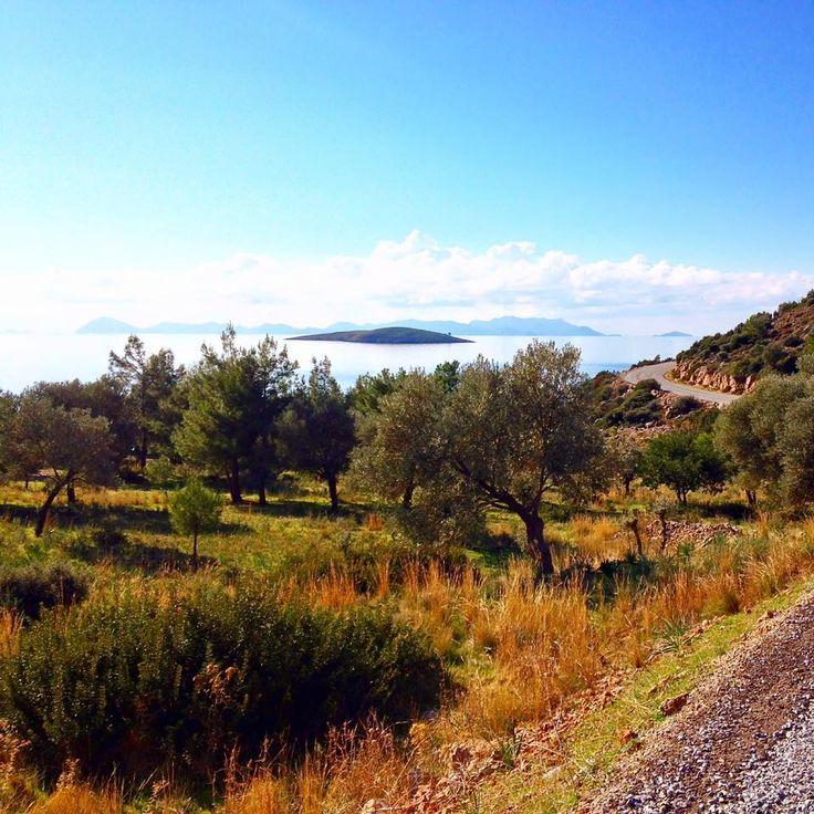 #Datça yolları muhteşem #doğa #manzara'larına sahiptir. Bu yolculuğun keyfine siz de varın. #palamutbükü #butikotel