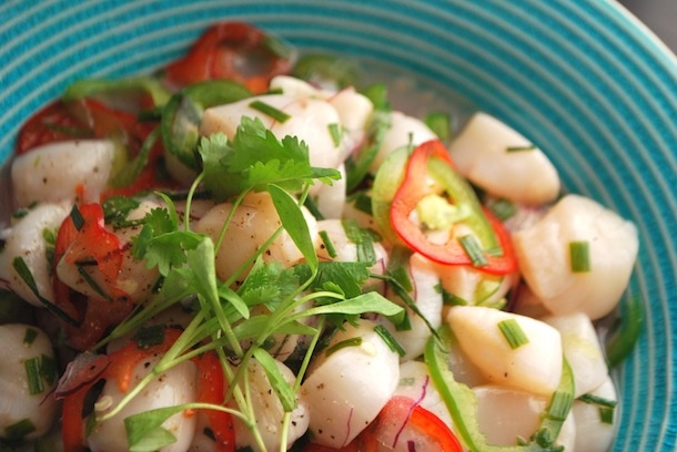 Order Dessert: Ceviche for Beginners: Easy Key Lime Scallop Ceviche ...