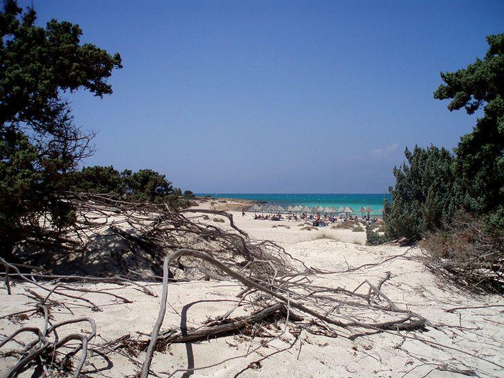 Λασίθι - Χρυσή (Γαϊδουρονήσι) - Hellas Beach