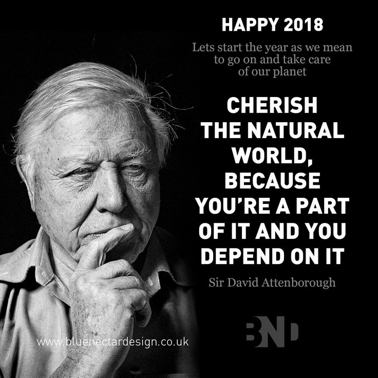 Wishing you all a very Happy New Year.  Let's think about our planet. The design industry MUST make a conscious effort to work smarter and be aware of the impact that packaging design decisions can have on our world. Think smart, design smart and share knowledge.  #packagingdesign #bluenectardesign #davidattenborough #loveourplanet #newyearsresolutions