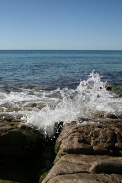 Waves in Noosa