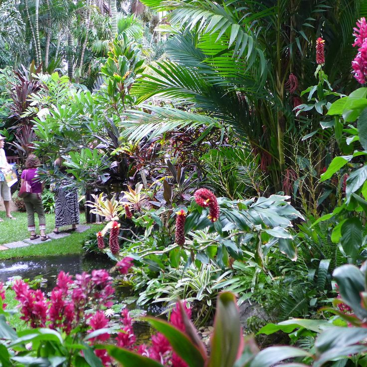 67 best bromeliad gardens images on pinterest tropical for Japanese themed garden plants