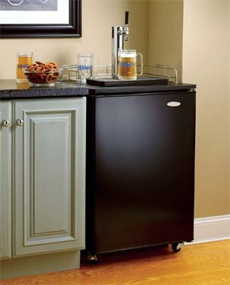 idea for kitchen updates: undercounter kegerator (in stainless tho).