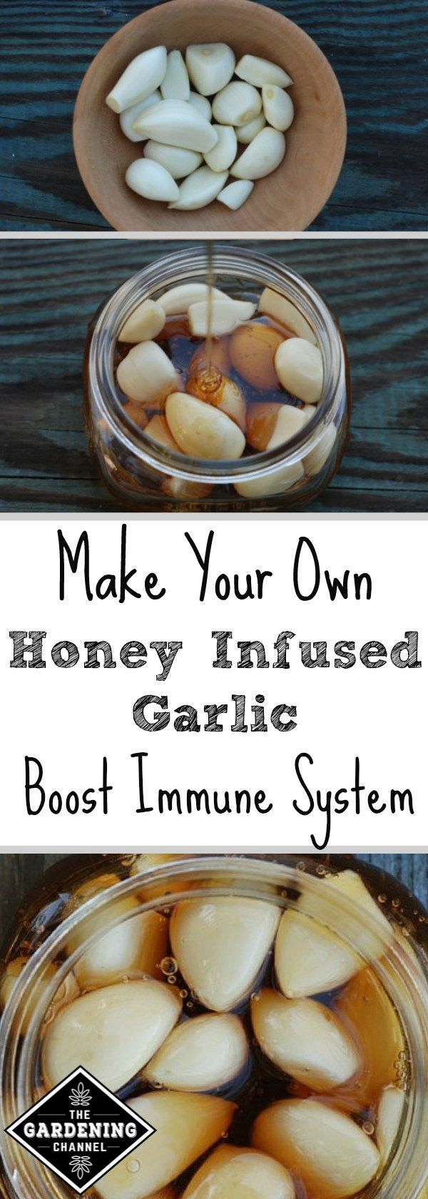 Looking for a natural immune booster during cold and flu season? Try making your own garlic infused with honey with this step by step guide.