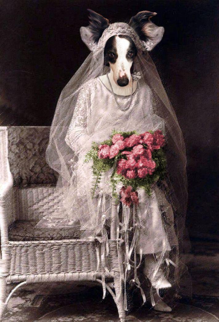 "1ere version de ""Let's get married!""."