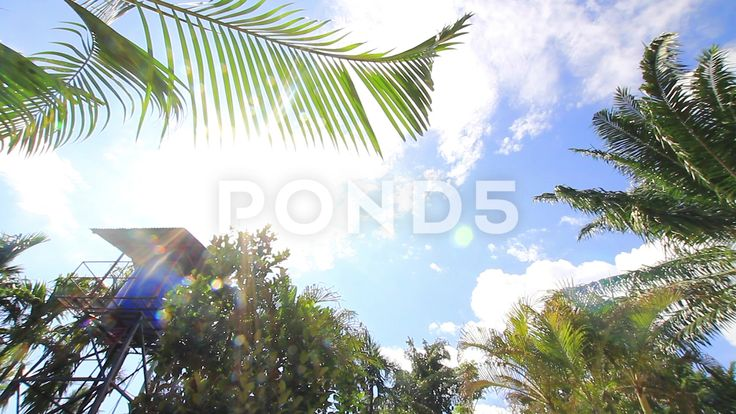 Time Lapse Water Tower Tropical Palm Trees Sunlight Lens Flare Clouds Sky - Stock Footage | by RyanJonesFilms