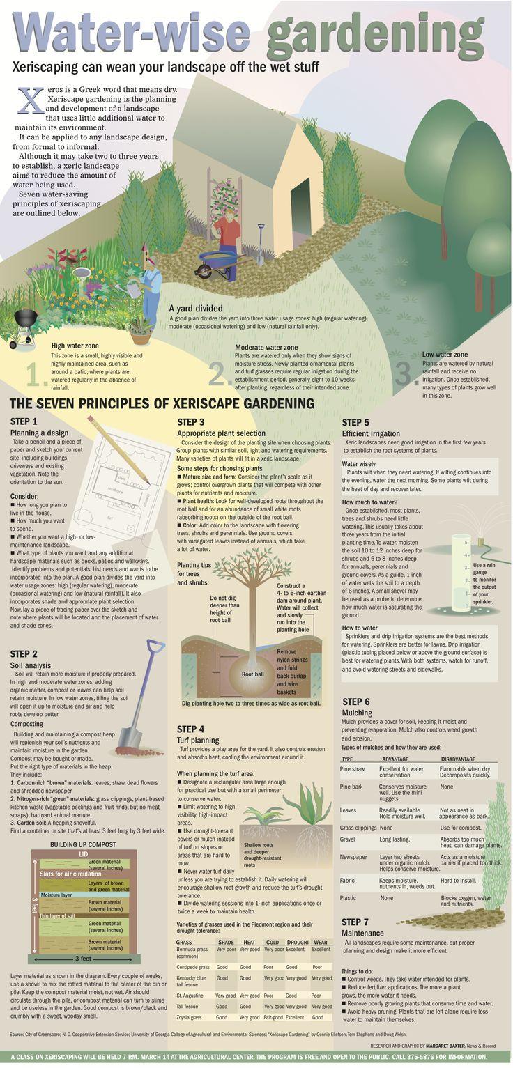 Good  principles of Xeriscaping principios para un paisajismo bajo en agua