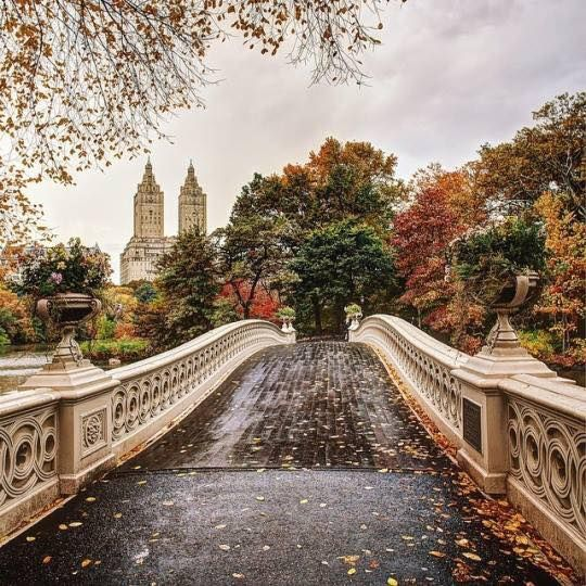 New York, Autumn Around Central Park