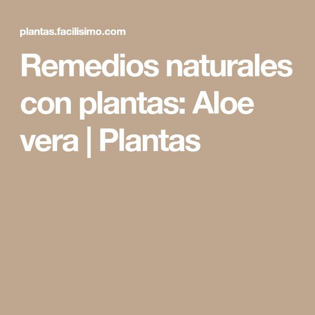 Remedios naturales con plantas: Aloe vera | Plantas