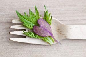 Dr. Oz Clean Detox Program 30-Day Meal Plan