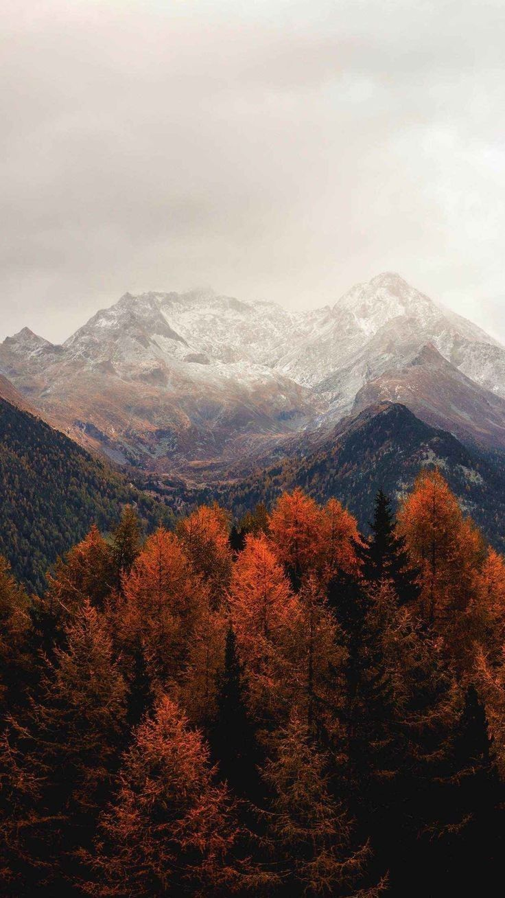 Pin By So She Glows On Wallpapers Autumn Scenery Fall Wallpaper Nature Wallpaper