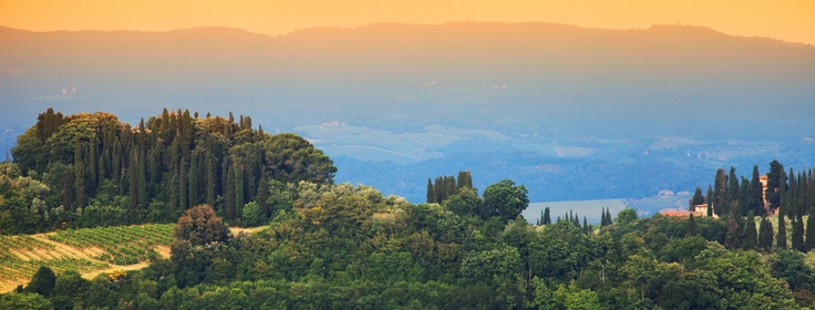 The Chianti Valley - A journey amidst ancient villages and good wine!!  Its splendid landscape is dotted with dense vineyards, chestnut forests, oaks and maples, attractive medieval villages, romantic castles and charming colonial farmhouses. It is also the birth place of one of the world's best red wines: Chianti.