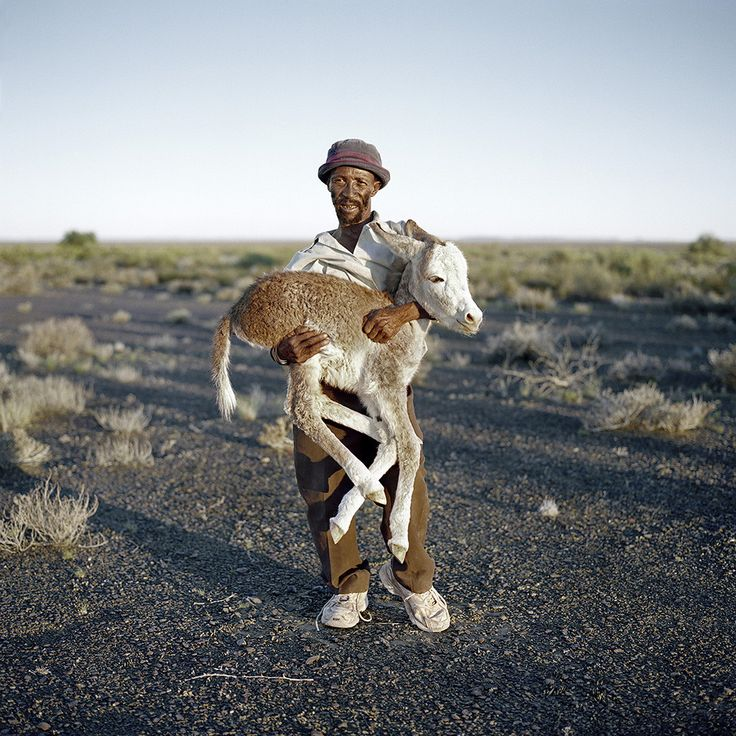 David Tieties with his three-day-old donkey. Verneukpan, Northern Cape, 6 April 2009