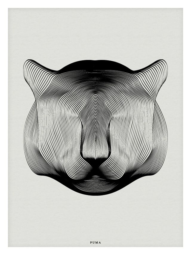 Animals Drawn with Moire Patterns4