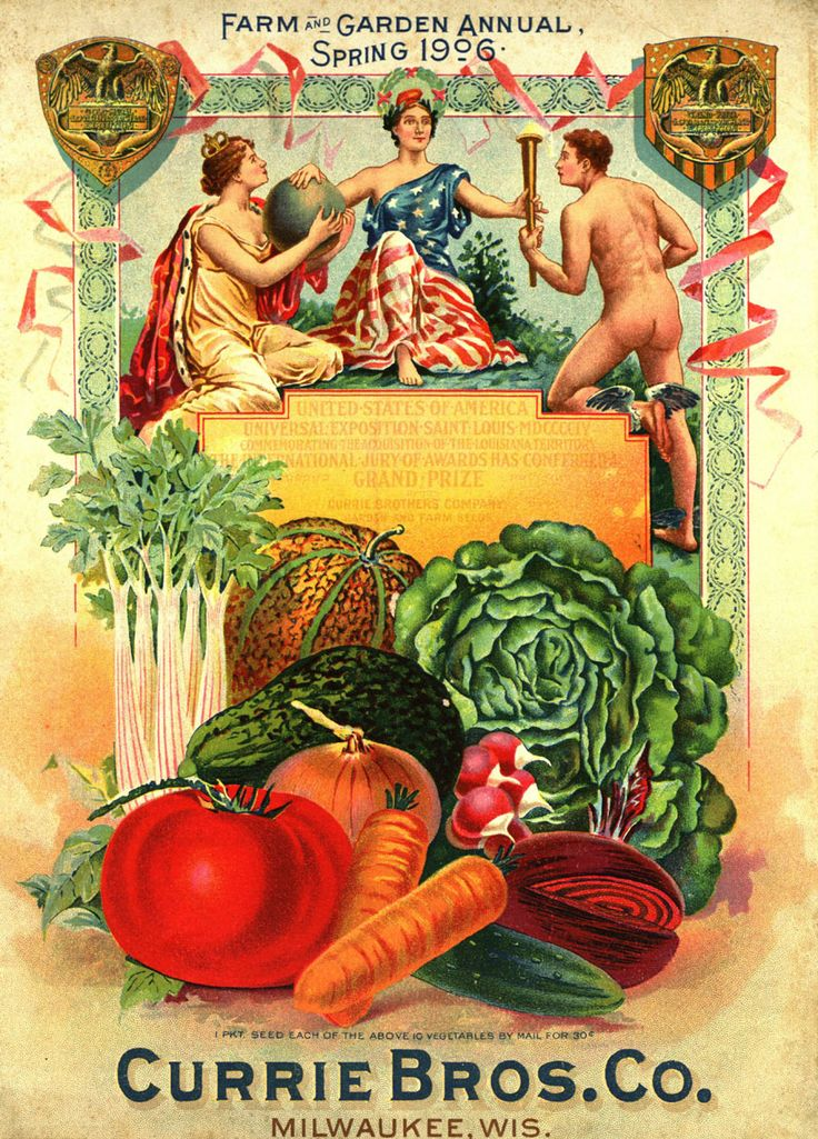 """From the collection at Andersen Horticultural Library. Nursery publications often tout major awards won by that company at world's fairs and other horticultural exhibitions. The cover of the Spring 1906 edition of Currie Brothers Co.'s """"Farm and Garden Annual"""" highlighted honors from the 1904 St. Louis World's Fair."""