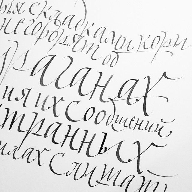 @m.marjina #calligraphy #cyrillic #sketch Инстаграм фото   Stapico (Webstagram)