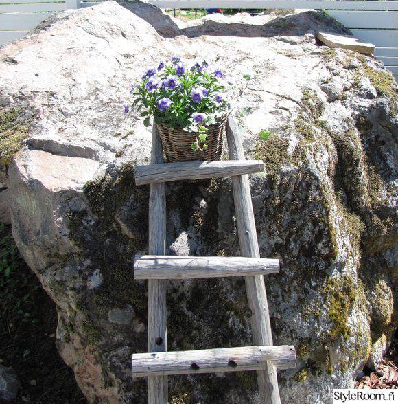 kivi,piha,orvokit,tikkaat