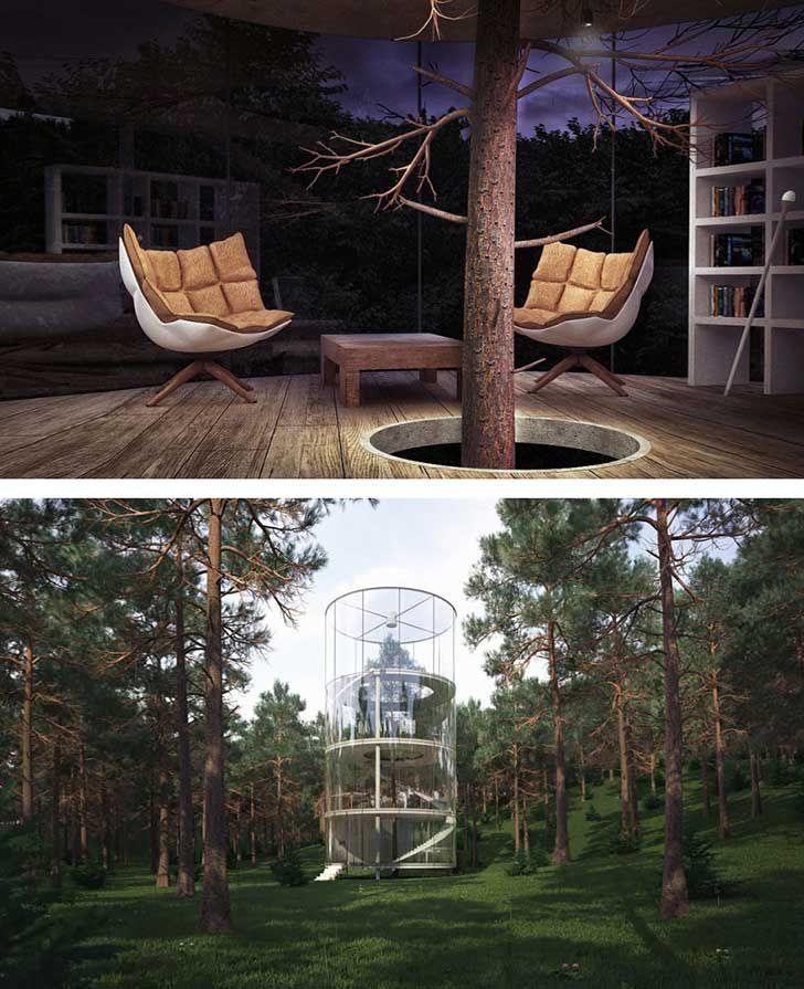architecture-around-the-trees-3__880