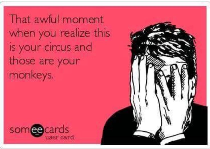 It is my circus.   They are my monkeys!