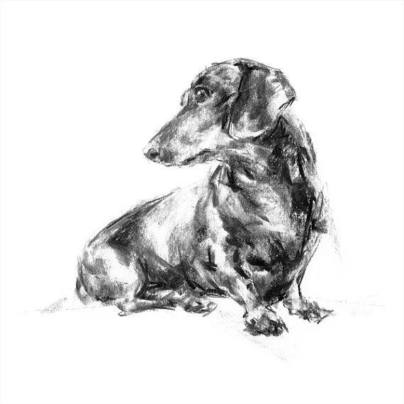 Dachshund Turning fine art dog print by paintmydog on Etsy