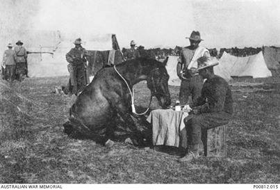 Australian Light Horse, breakfast trick.