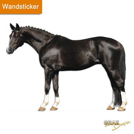 1000 ideen zu wandtattoo pferd auf pinterest zeichnung - Pferde kinderzimmer ...