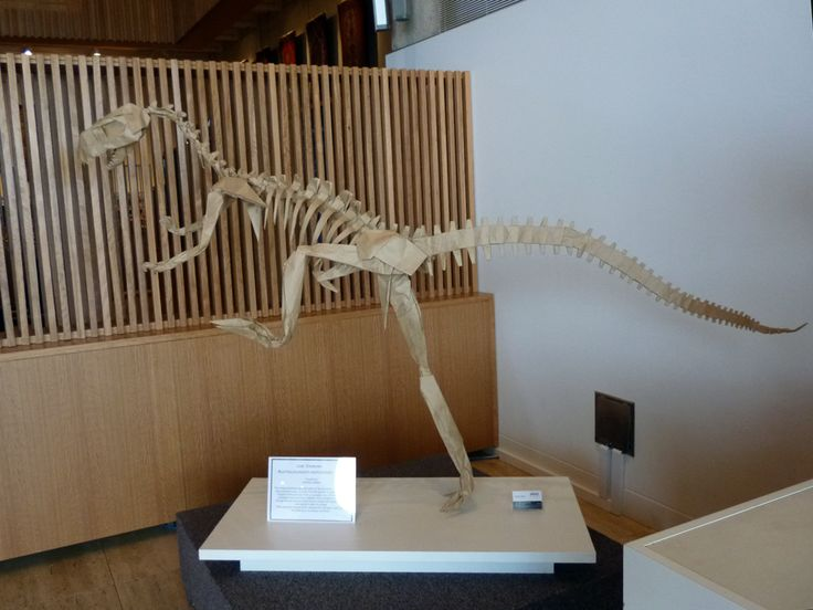 Dinosaur origami for education exhibition in Queensland Museum - Plico Design