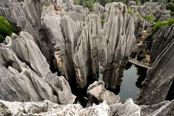 Stone Forest (China)