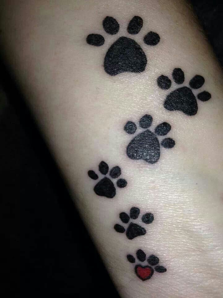 1000 images about memorial paw print tattoo ideas on for How much is a prinker tattoo