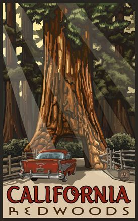 California Redwoods Travel Poster http://www.bendbungalow.com/images/PAL-carthruaredwood.jpg