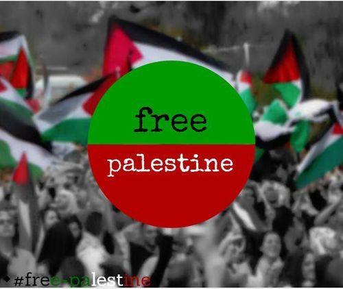 Image via We Heart It https://weheartit.com/entry/128240693/via/25055609 #black #flag #free #freedom #Gaza #green #islam #palestine #people #red #war #عربي #فلسطين #إسلام #مسلمة #مسلم #حرية #ثورة #غزة #فلسطيني #العصفالماكول