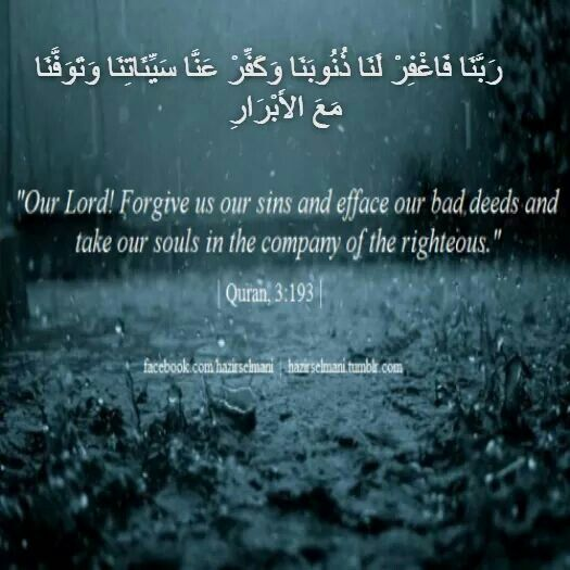 Other Religions Practices Sacred Texts: 1228 Best Qur'an Quotes Images On Pinterest