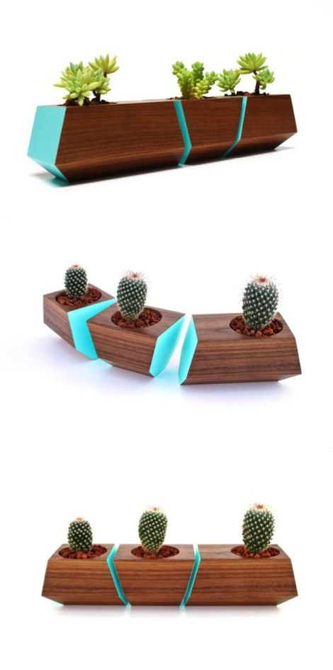 boxcar succulent planters solid walnut with robin egg. Black Bedroom Furniture Sets. Home Design Ideas
